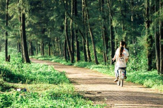 con đường tình yêu cực kỳ  lãng mạn